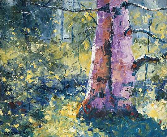 Light on the Birch