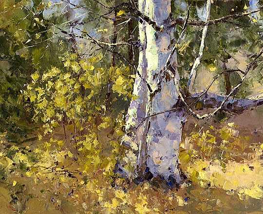 Birch Tree, November