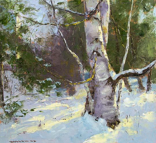 The Birch in Winter