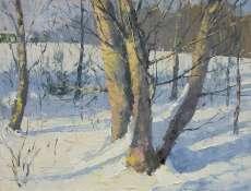 Silver Aspen in Winter