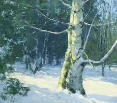 Sunlit Birch, March